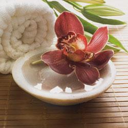body to body massage lotus thaimassage